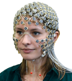 Geodesic Sensor Net for dense array EEG recordings